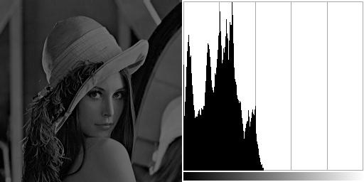 Dark lena with associated histogram.